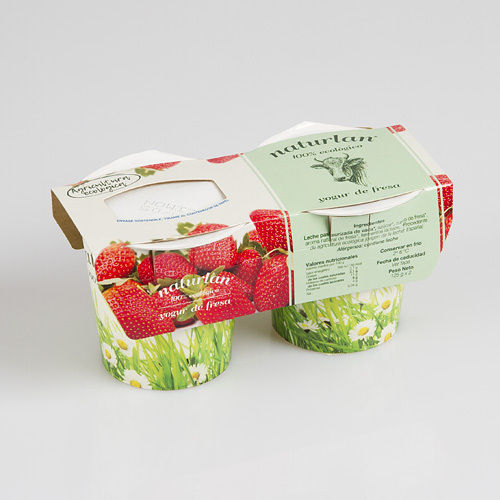 YOGURT NATURAL CON FRESAS 2X125GR ECOLOGICO